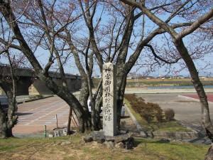 神宮御用材貯木池跡(宮川度会橋下)
