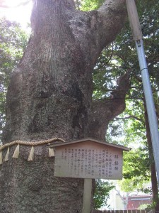 C061 河原淵神社 (かわらぶちじんじゃ) 豊受大神宮 摂社