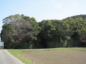 C071 川原神社 (かわらじんじゃ) 皇大神宮 摂社