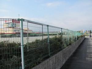 県道37号線 大野橋西交差点を玉城方面へ(ピアゴ前)
