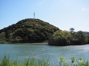 五十鈴川左岸から望む社叢(朝熊神社、鏡宮神社)