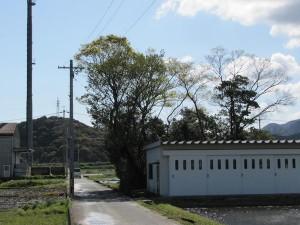 加努弥神社 (かぬみじんじゃ) 皇大神宮 末社