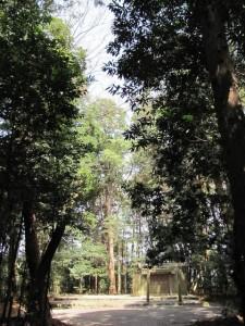 C087 小社神社 (おごそじんじゃ) 皇大神宮 末社