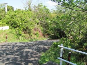 旅荘 海の蝶の裏の坂道