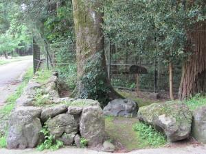 滝原宮前から 里登り口へ