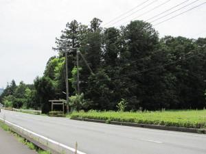 R42号線を滝原宮へ向かう途中