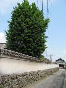 鴨神社から下り山神公民館を過ぎた辺り