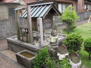 臥龍梅(秋葉神社)