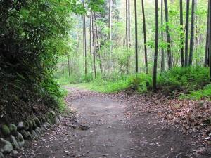 多岐原神社から 宮川 三瀬の渡し場跡付近
