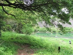 宮川 三瀬の渡し場跡付近