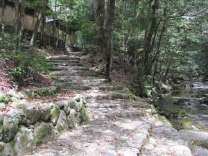 瀧原宮(御手洗場からの上りの石段)