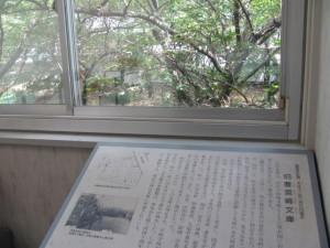 旧豊宮崎文庫(窓から)