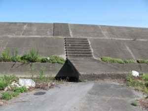 宮川の右岸堤防へ