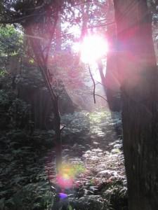 朝日(籾種石付近)