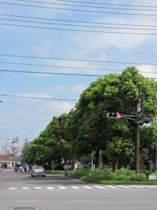 県道37号線 浦口交差点 (JR山田上口駅へ)