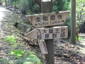 稜線コース(左)と山腹コース(右)の分岐