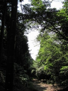 朝熊峠から金剛證寺へ