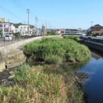 勢田川(伊勢庁舎前)