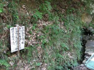 高麗広から五十鈴川下流へ