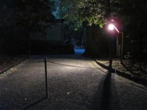 北御門参道から御正宮の裏