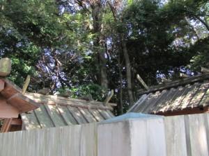 田上大水御前神社(左)、田上大水神社(右)