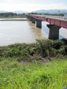 豊浜大橋(宮川左岸より)