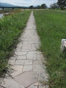 宮川左岸(宮川親水公園)