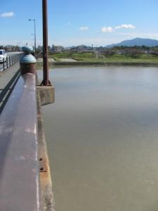 度会橋から東詰方面を望む