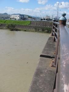 度会橋から西詰方面を望む