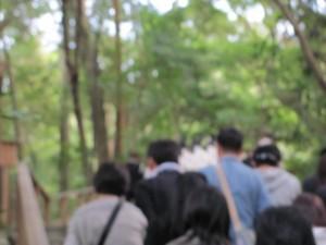 奉幣の儀(参進の後から:多賀宮へ)