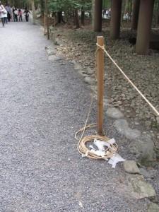 神嘗祭 奉幣の儀 当日(御稲御倉)