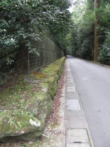 瀧原宮 前の道路