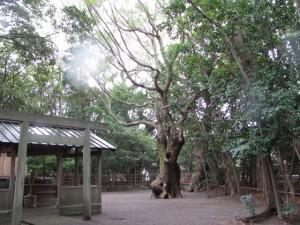 御塩道(橘神社)