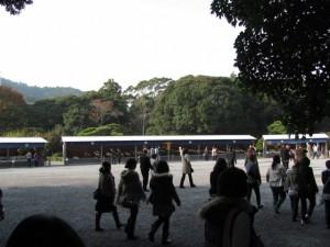 菊花奉納・展示(内宮神苑)