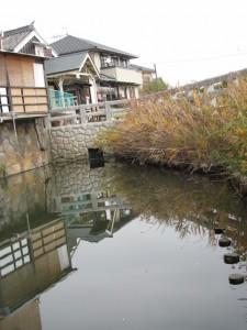 修景池から川の駅 河崎を望む