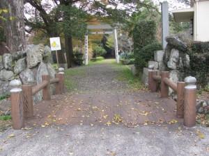 東側の鳥居から(離宮院公園)