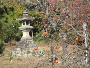 幸神社の常夜燈を望む