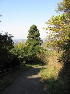 的山公園の入口へ