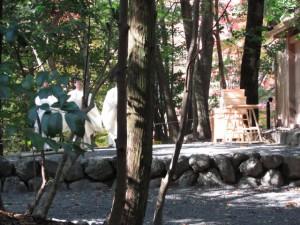 瀧祭神にて