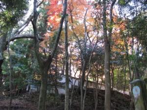 旧林崎文庫