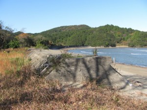 池の浦シーサイドパーク海水浴場