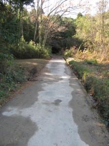 国道42号線へ抜ける林道