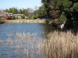松下社の近くにある池