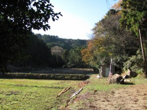 江神社の奥