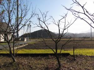 加努弥神社から鏡宮神社方面を望む