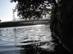 虎石付近の朝熊川(鏡宮神社)