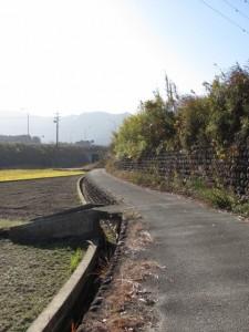 蟹田排水機場から神宮神田へ