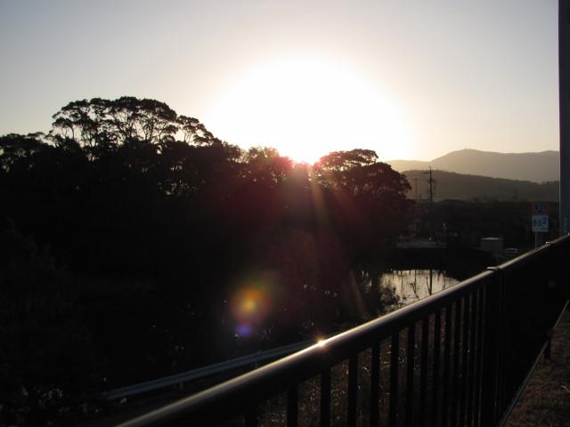 国道23号線の階段(浜郷神社近く)付近