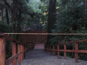 新御敷地付近の仮設トイレ(内宮)