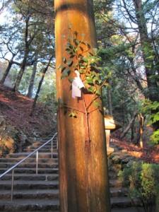 宇治神社の鳥居